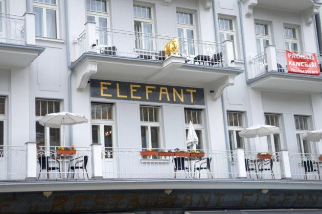 Далее справа кафе Элефант (Elefant)