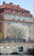 Карлов университет. Комплекс зданий