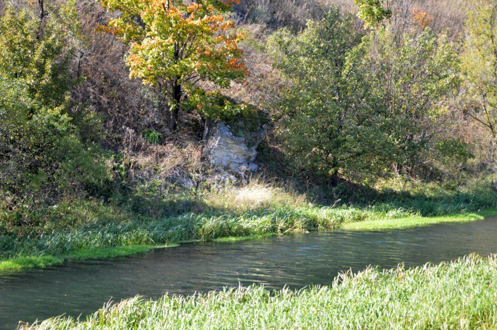 Прогулка вдоль реки Воргол